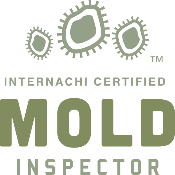 Tomball mold inspection near me
