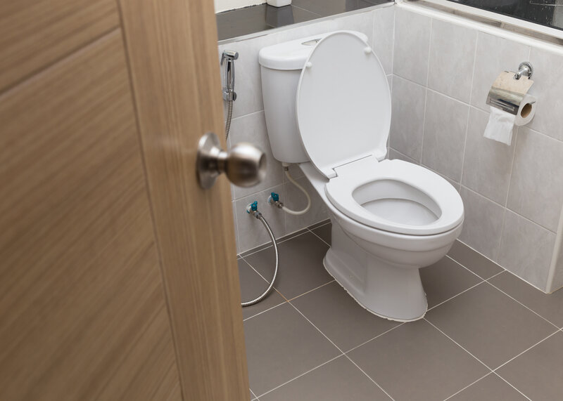 Toilet Inspection Tomball